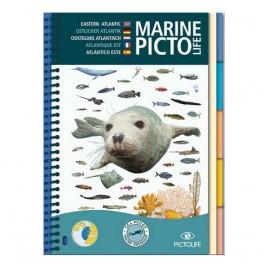 Marine Pictolife Atlantique Est
