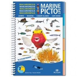 Makaronesicher Marine Pictolife