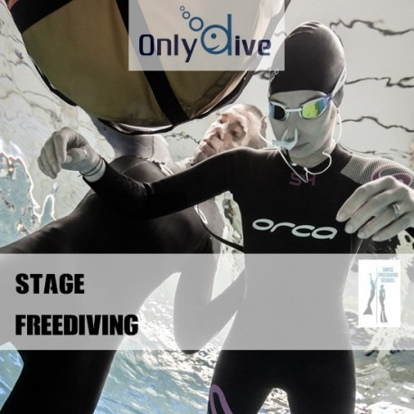 Stage Freediving