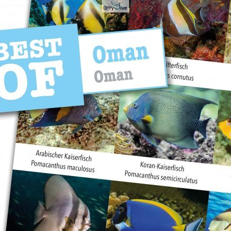 DiveSticker autocollant Oman