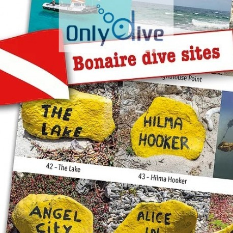 DiveSticker autocollants sites de plongée Bonaire