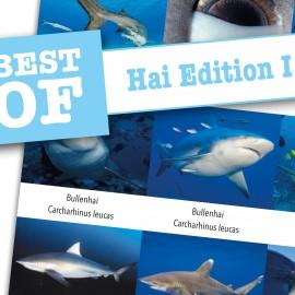 DiveSticker autocollants Hai Edition Requins