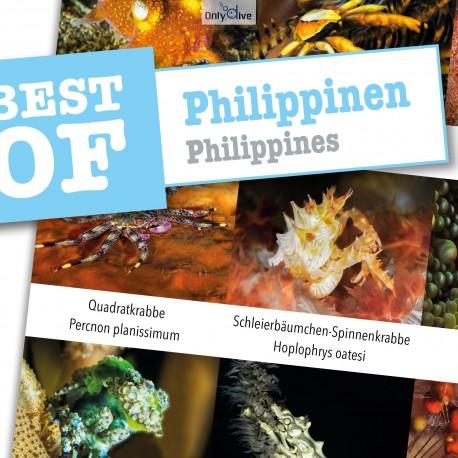DiveSticker autocollants Philippines