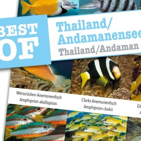 DiveSticker autocollants Thaïlande/Andaman