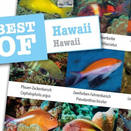 DiveSticker autocollants Hawaii
